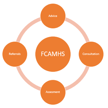 FCAMH WHAT WE DO